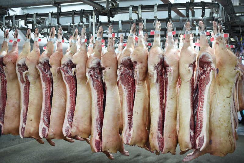 """缓解""""猪周期""""波动,多部门合力完善政府猪肉储备调节机制"""