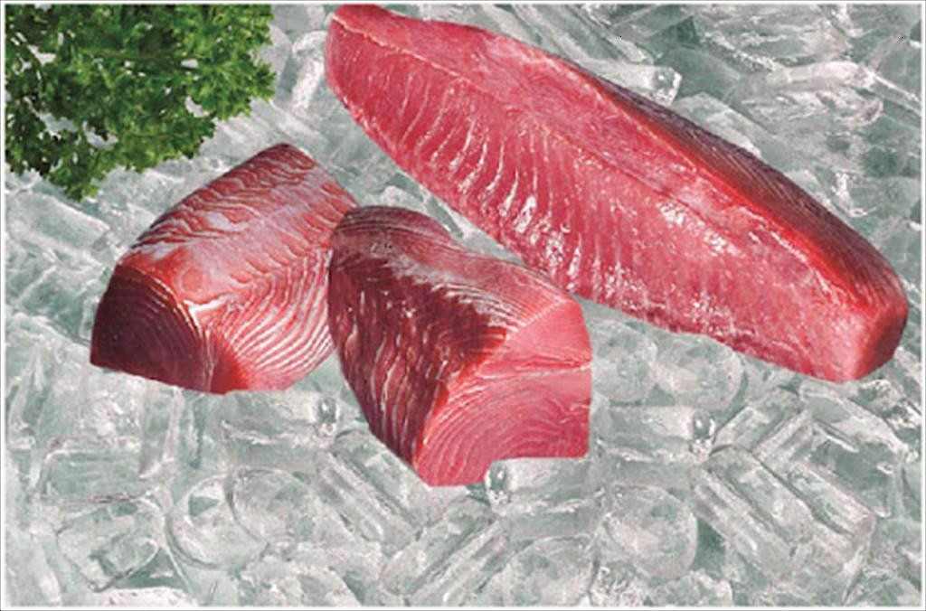 远超预期:9月上半月越南对华金枪鱼出口同比激增332%